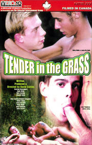Tender In The Grass
